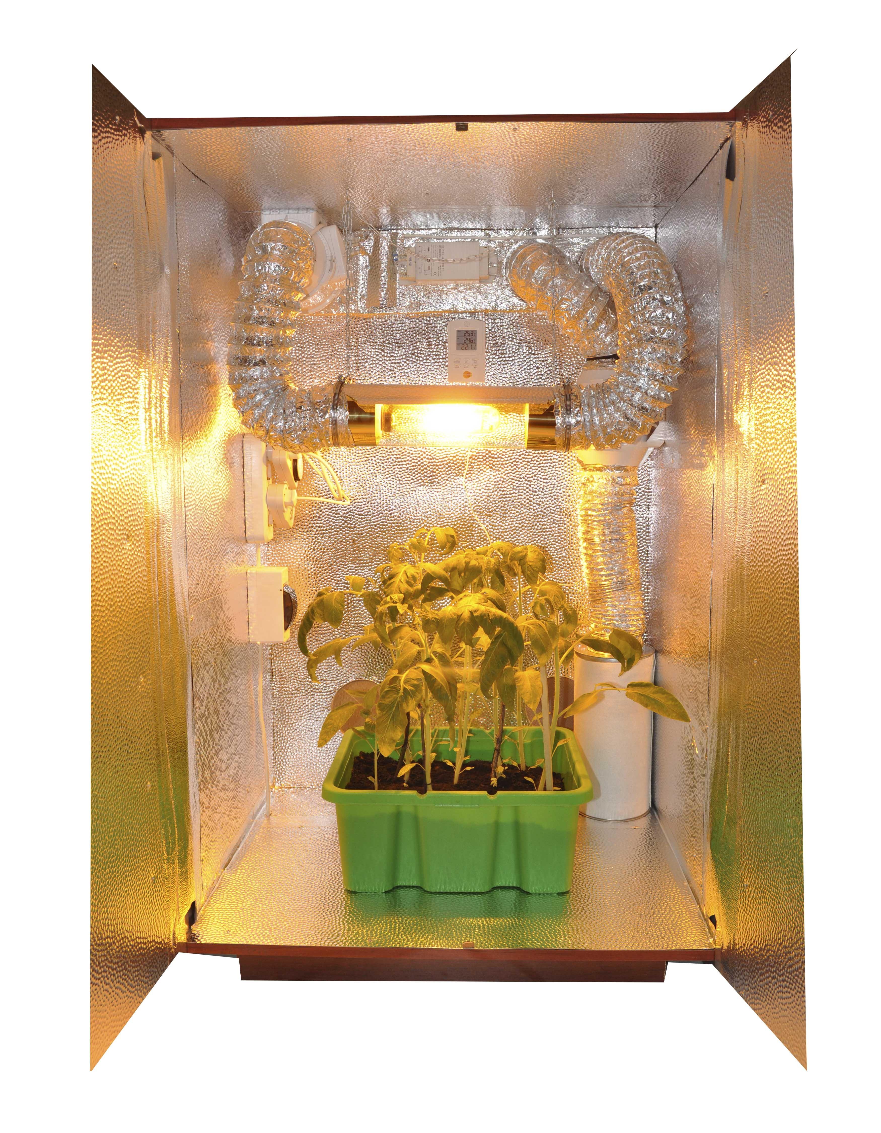 Бокс для выращивания растений 55